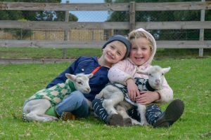 Narnu  Farm Farm stay/ School Camp - Accommodation Australia