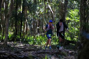 Elephant Trail Race - Accommodation Australia