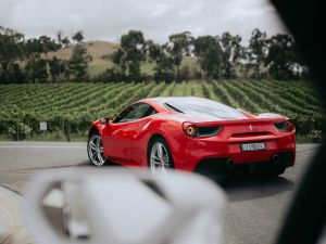 The Prancing Horse Supercar Drive Day Experience - Melbourne Yarra Valley - Accommodation Australia